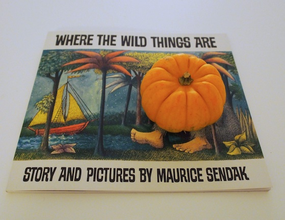 wild thing mini pumpkin 2 A teeny bit Halloweeny (pocket sized pumpkins and a sea green squash)