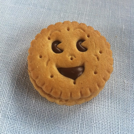 happy biscuit - convo pieces