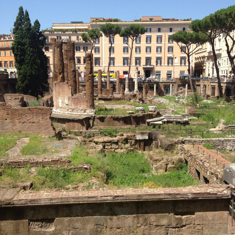 Largo di Torre Argentina in Rome – where Casear was stabbed and now a cat sanctuary