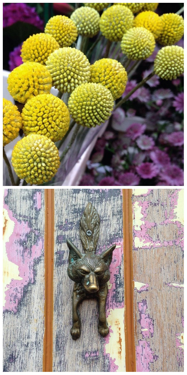 Visit Columbia Road flower market in London