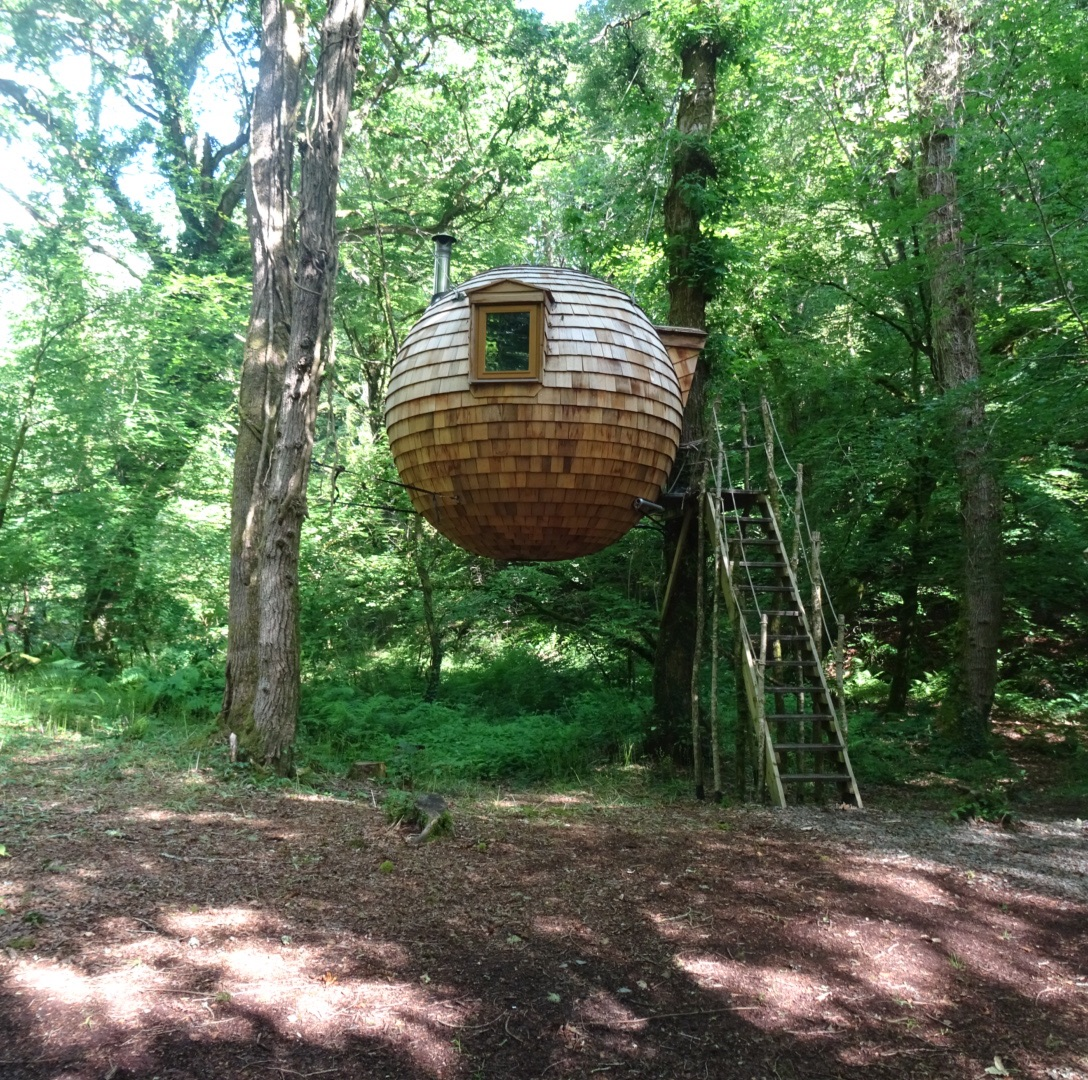The best ever treehouse in Cornwall, England | Conversation Pieces