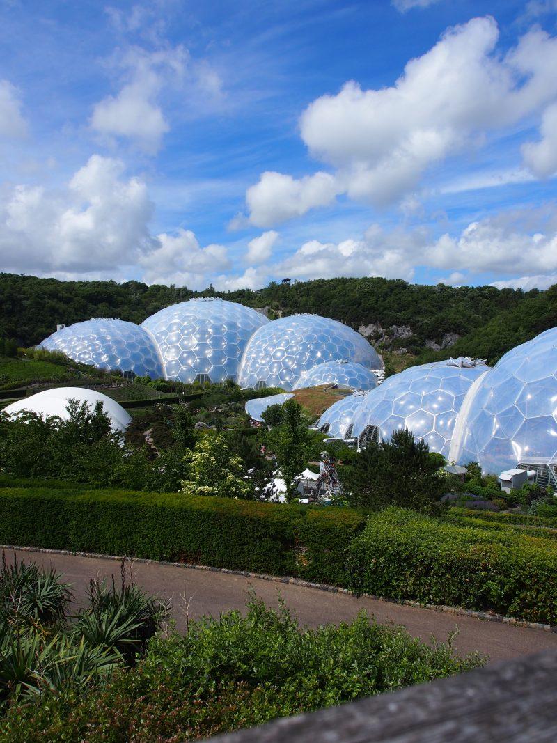 The amazing Eden Project in Cornwall | Conversation Pieces