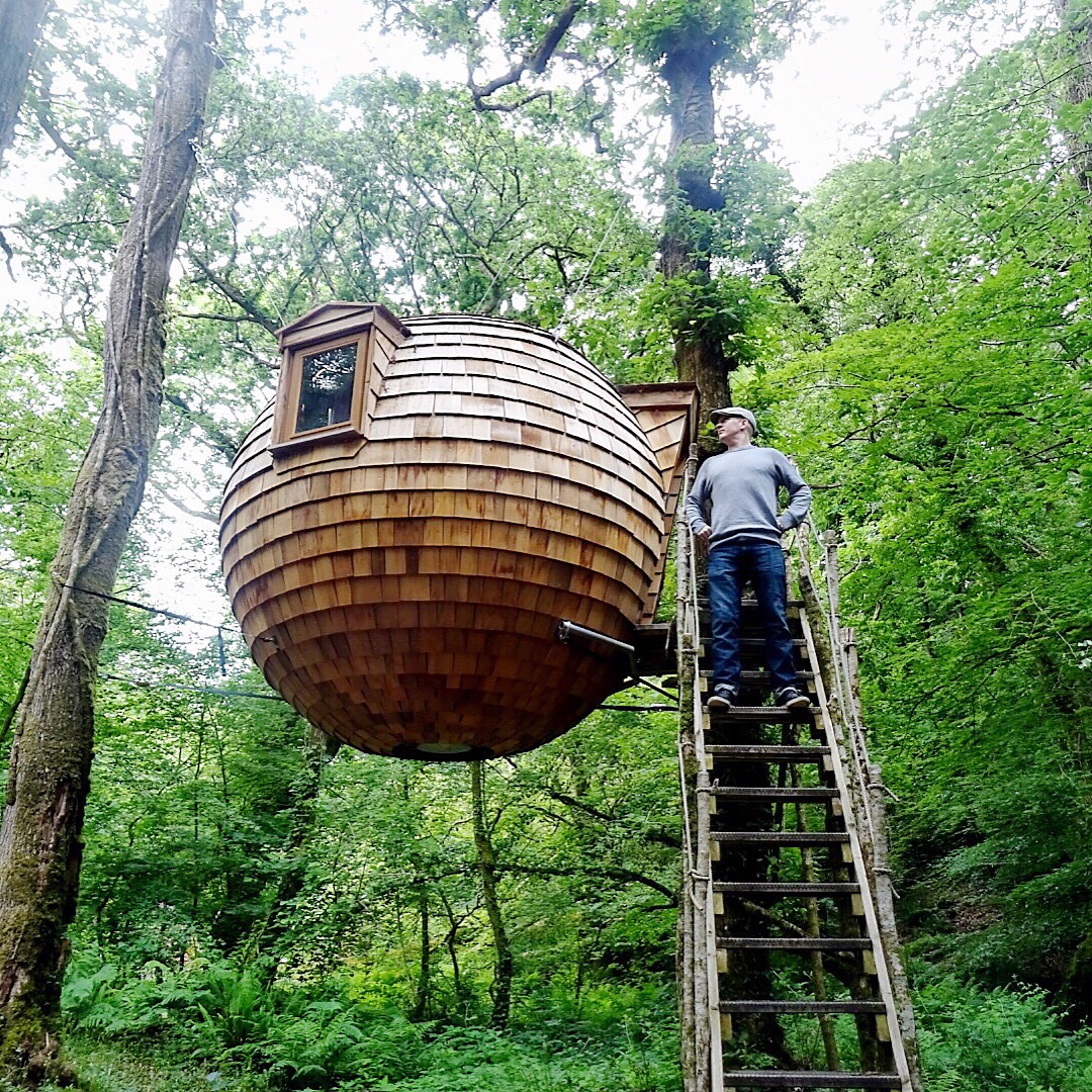 The Ewok-style round treehouse in Cornwall | Conversation Pieces ...