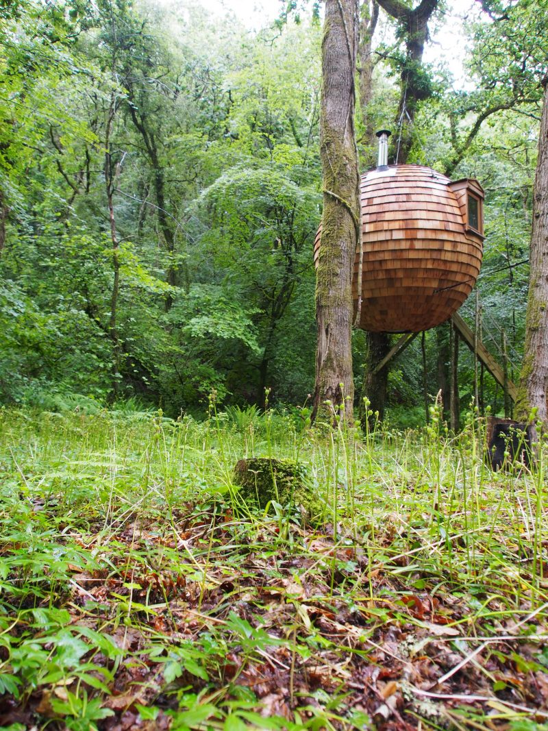 Amazing round treehouse in Cornwall | Conversation Pieces