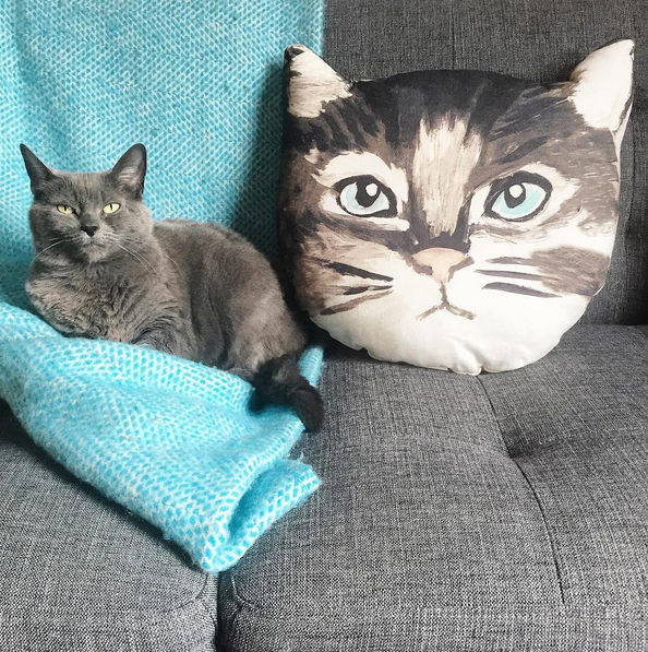 Actual cat and cat pillow at Conversation Pieces' home